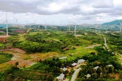 Hàng loạt dự án điện gió ở Quảng Trị gặp khó trong giải phóng mặt bằng