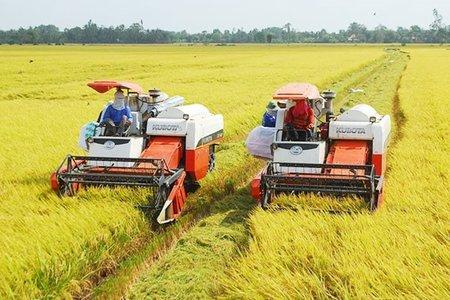 Đẩy nhanh ''luồng xanh'' và cho vay vốn tiêu thụ nông sản